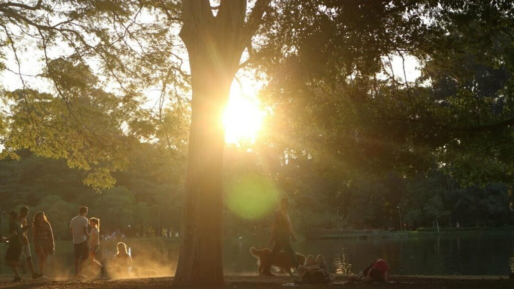 Pessoas aproveitam final de tarde no Parque Ibirapuera – Como chegar da Av. Paulista aos principais pontos de São Paulo | Club Coworking